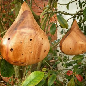 Pluvia bughouse